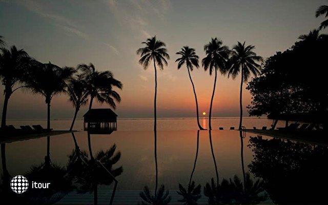 Meeru Island Resort 8