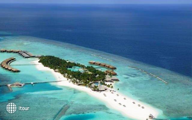 Veligandu Island Resort 81