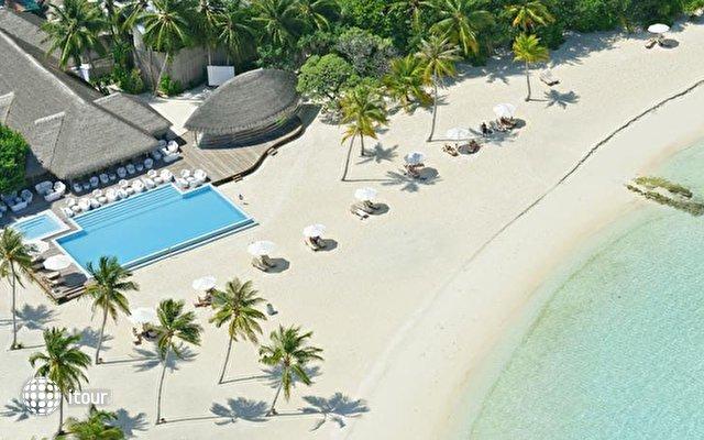 Maafushivaru Maldives 8