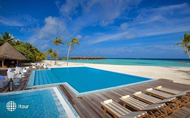 Maafushivaru Maldives 6
