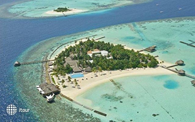 Maafushivaru Maldives 1