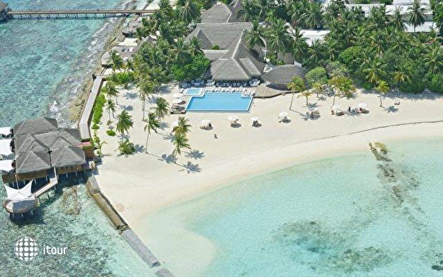Maafushivaru Maldives 2