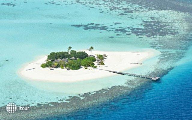 Maafushivaru Maldives 5