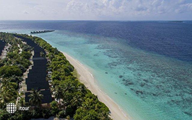 Furaveri Island Resort & Spa 2