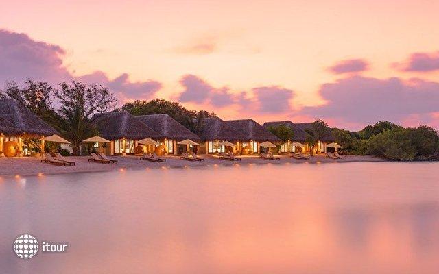 Dhigufaru Island Resort 4