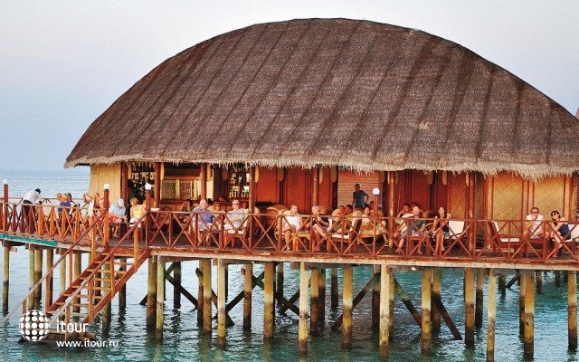 Angaga Island Resort & Spa 4
