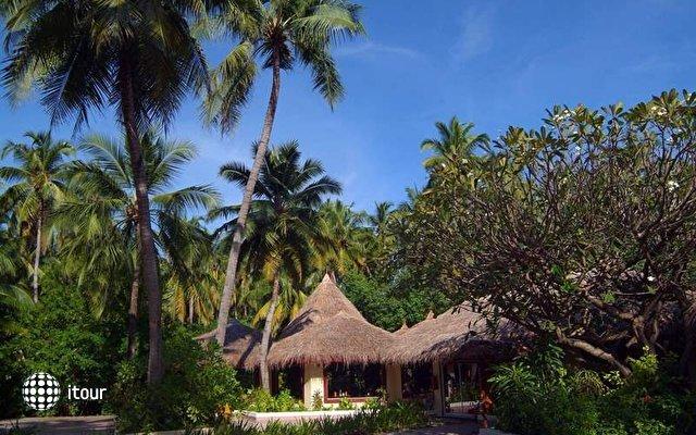 Biyadhoo Island Resort 8