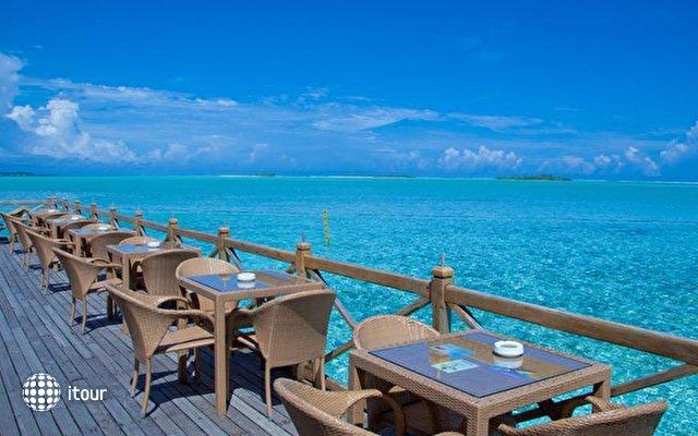 Cinnamon Hakuraa Huraa Maldives (ex. Chaaya Lagoon Hakura Hura) 7
