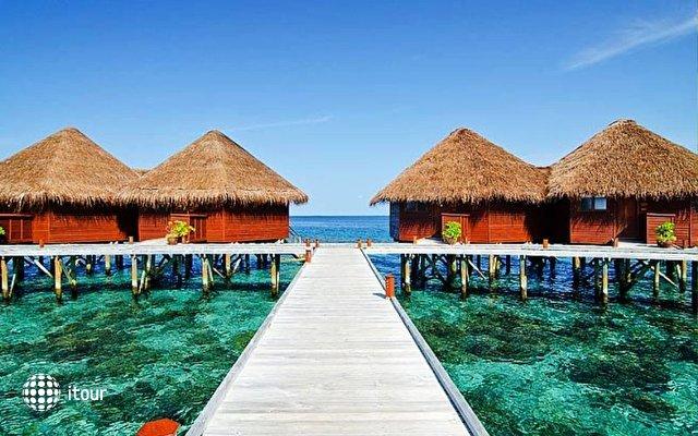 Mirihi Island 6