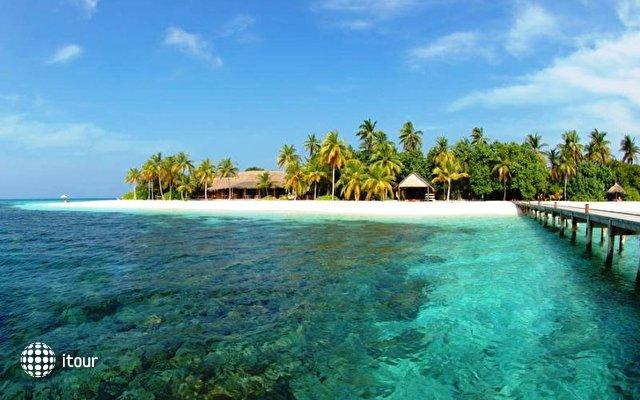 Mirihi Island 10