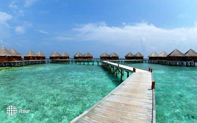 Mirihi Island 1