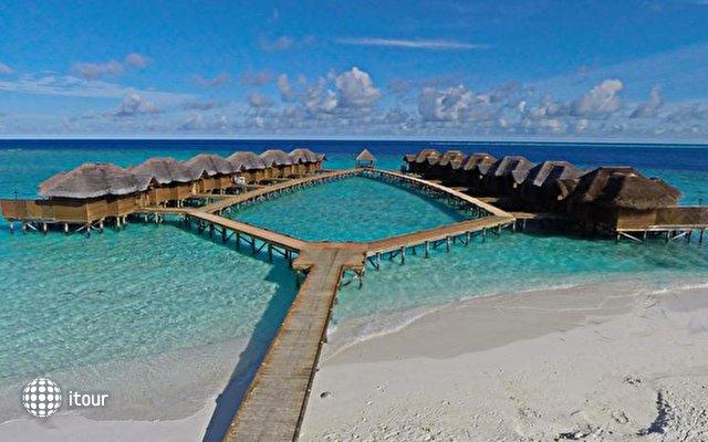 Fihalhohi Island Resort 4