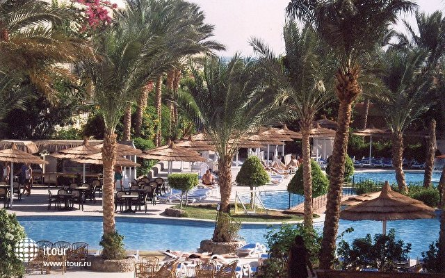 Panorama Bungalows Resort Hurghada 10