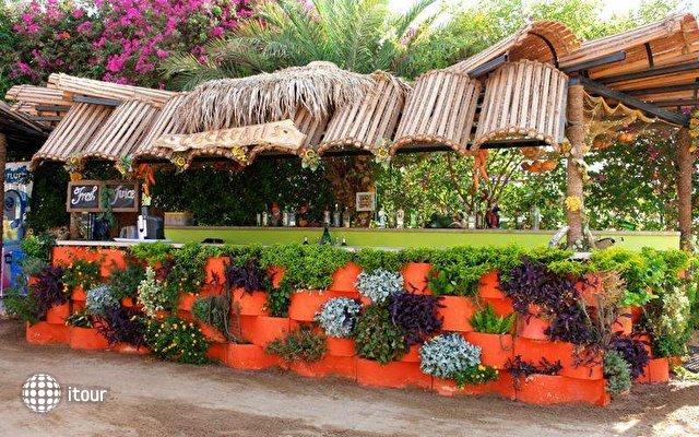 Elysees Hurghada Hotel 8