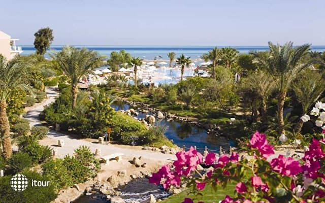 Movenpick Resort El Gouna 3