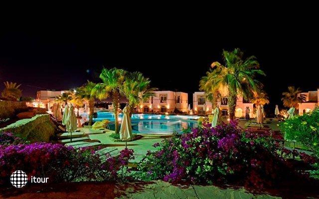 Otium Hotel Aloha Sharm (ex. Shores Aloha) 10