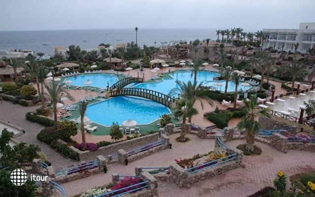 Vera Club Queen Sharm 3