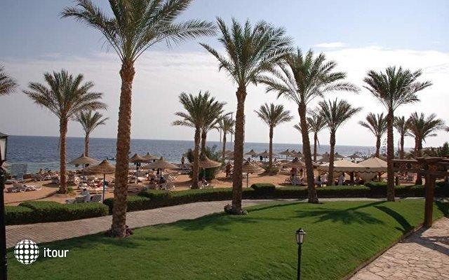 Queen Sharm Resort View & Beach ( Ex.vera Club Queen Sharm) 7