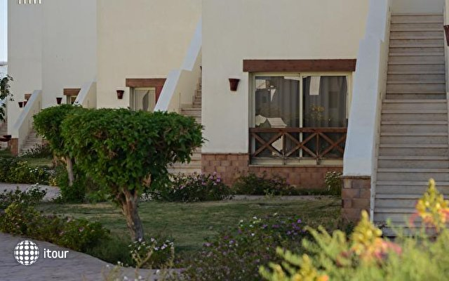 Otium Hotel Golden Sharm (ex. Shores Golden) 8