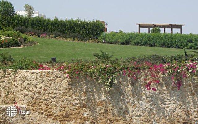 Stella Di Mare Beach Hotel & Spa (ex. Stella Sharm Beach Hotel & Spa) 8