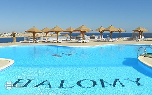 Halomy Naama Bay Resort (ex. Halomy Sharm Village) 8