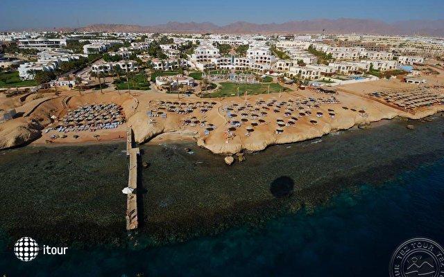Otium Hotel Amphoras Sharm (ex. Shores Amphoras) 4
