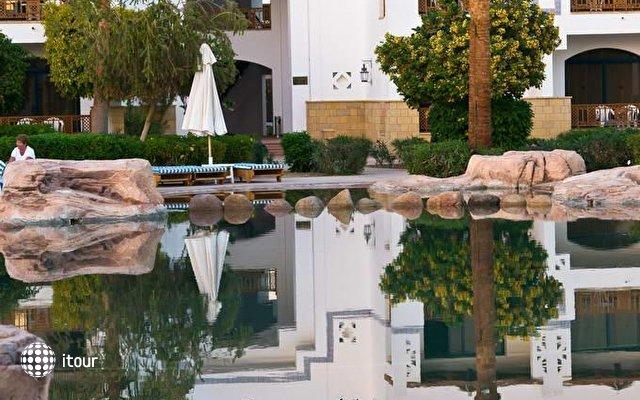 Otium Hotel Amphoras Sharm (ex. Shores Amphoras) 9