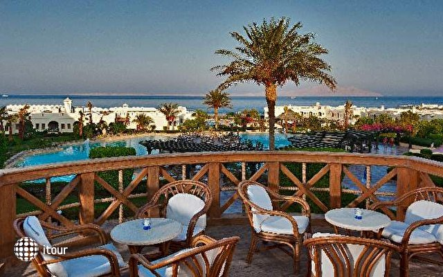 Sea Club Sharm 5