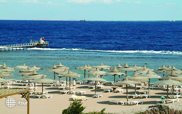 Sea Club Sharm 6