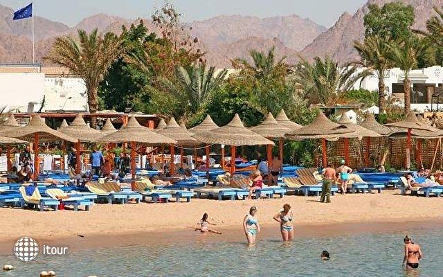 Kahramana Hotel Sharm El Sheikh 4