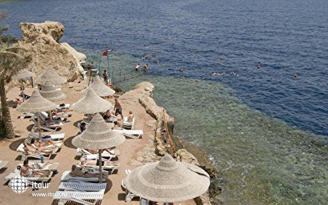 Dreams Beach 9