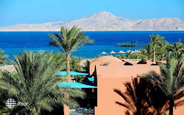 Magic Life Sharm 6