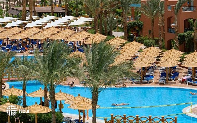 Magic Life Sharm 8