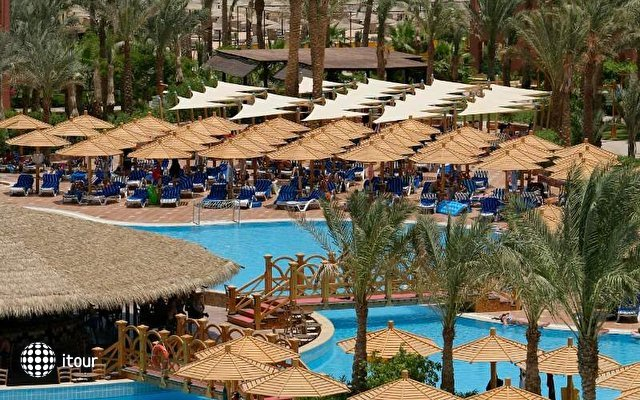 Magic Life Sharm 9