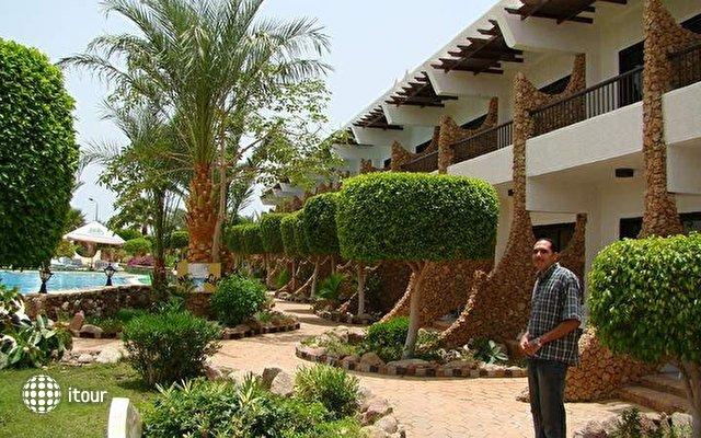 Turquoise Beach Hotel (ex. Partner Turquoise) 4