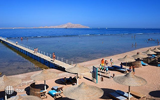 Sea Life Resort Sharm 9