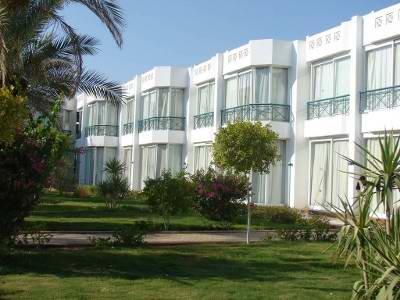 Amarante Garden Palms 10