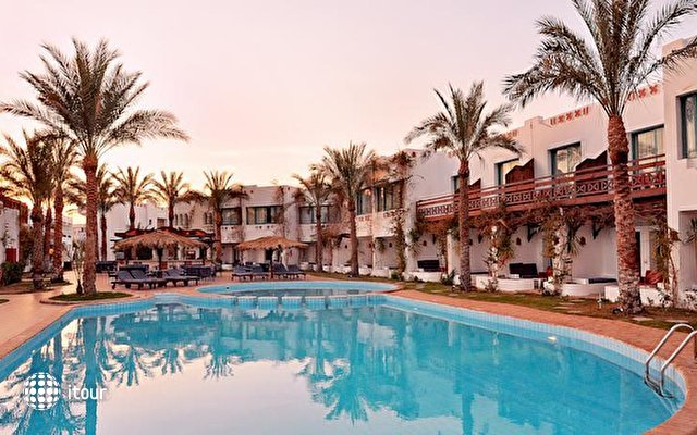 Ocean Red Sea Club Sharm 1