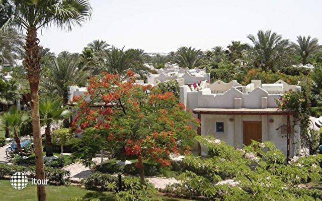 Hilton Fayrouz Resort 9