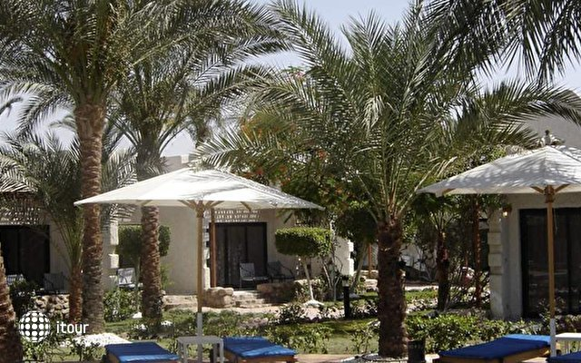 Hilton Fayrouz Resort 10
