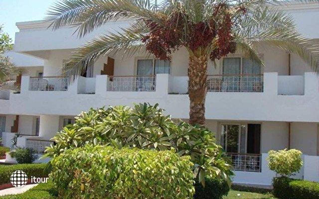 Viva Sharm 2
