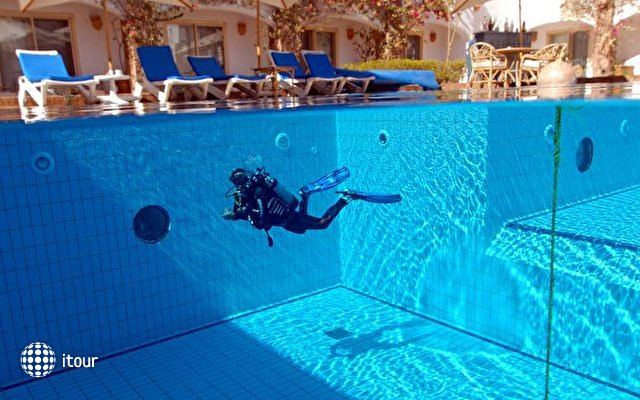Camel Dive Club & Hotel 3