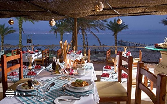 Club Marmara (ex. Morgana Beach Resort Taba) 7