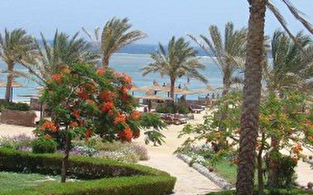 El Phistone Resort Marsa Alam 9
