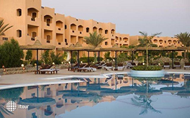 Elphistone Resort Marsa Alam 10