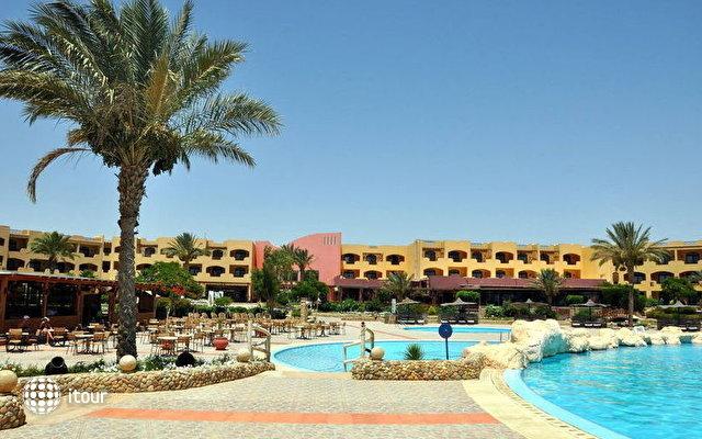 Elphistone Resort Marsa Alam 5