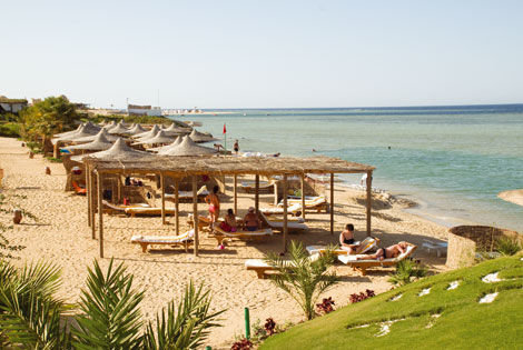 Blue Reef Red Sea Resort 6