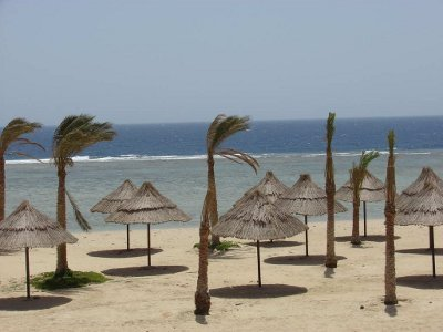 Dima Beach Resort Marsa Alam 5