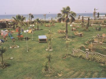Maamoura Beach 4