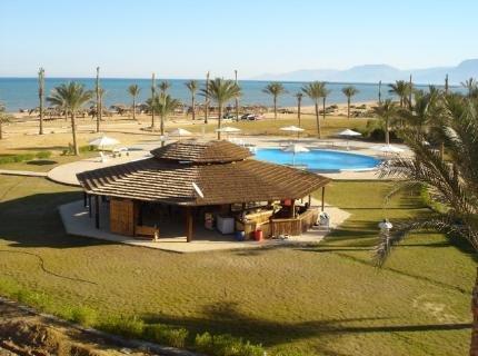 Horizon El Wadi 4